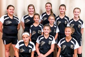 Cannelton Bulldogs Junior High Volleyball Season Preview