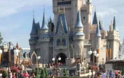 Disney's Magic Kingdom - What secrets are hiding in the castle?