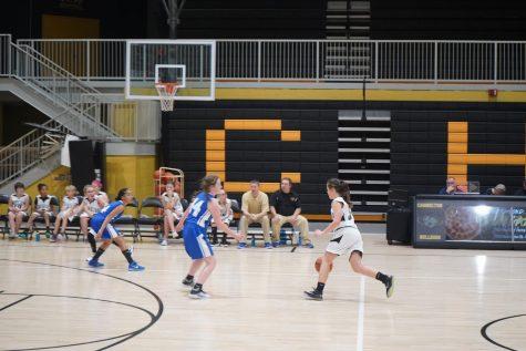 Cannelton Bulldogs Junior High Volleyball Season Preview