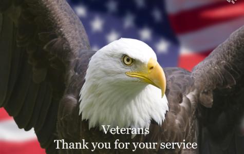 Veterans Day: Veterans Slideshow